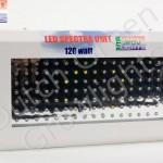 dggl-120watt1